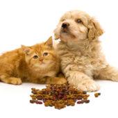 Hrana za pse i mačke