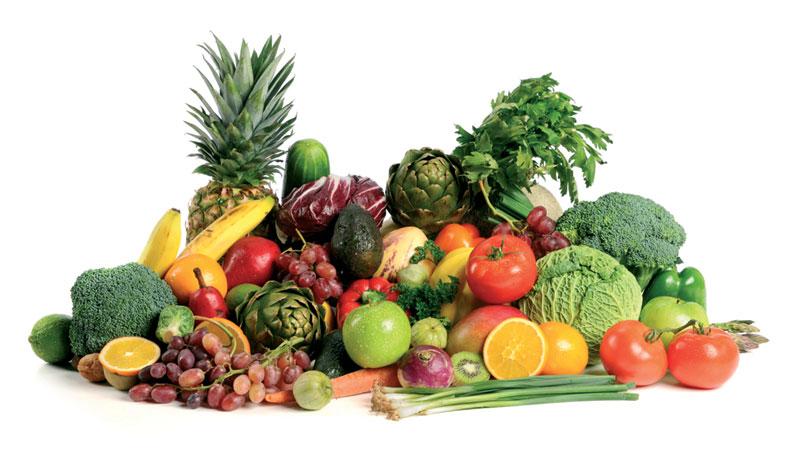 Antioksidansi u ishrani pasa